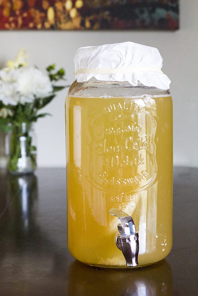 how to brew kombucha at home with natural filter