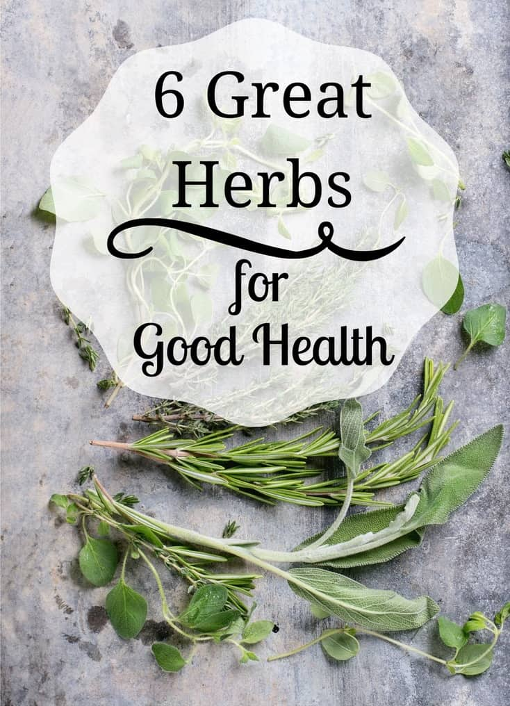 6 Herbs for Health {and how to incorporate them!}